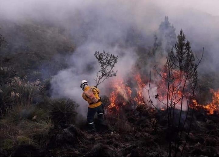 Incendios forestales proliferan en Santander por la irresponsabilidad de los campesinos | EL FRENTE