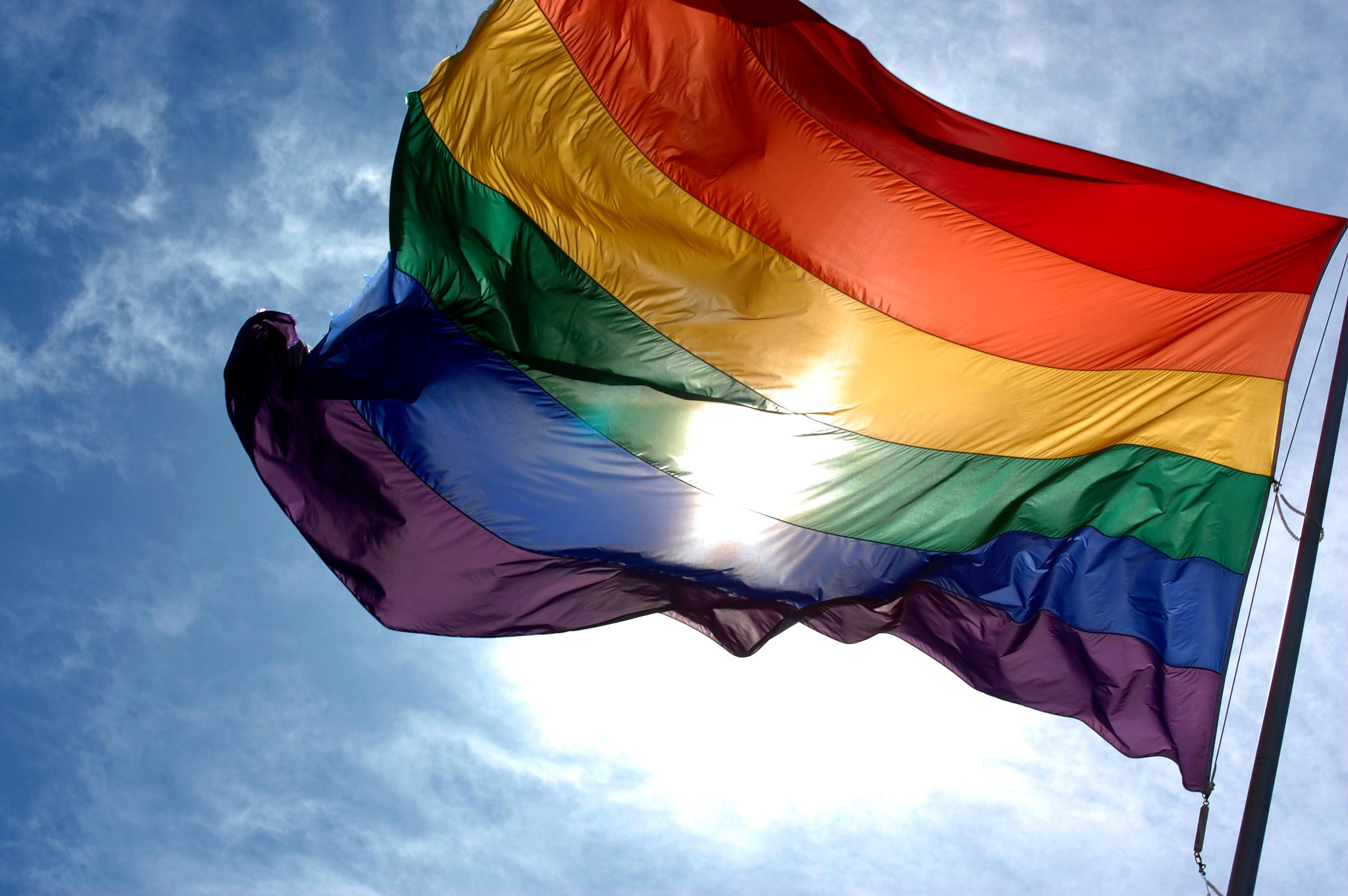 ¿Qué significan las siglas LGBTI+ y por qué el multicolor de la bandera los identifica?   EL FRENTE