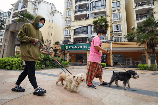 Cero muertos en China desde el inicio de la epidemia | Noticias | Mundo | EL FRENTE