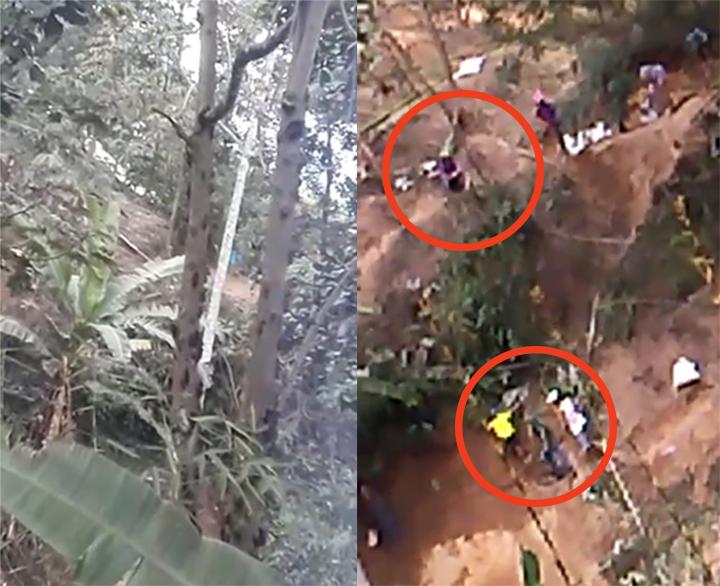 VIDEO. Migrantes talan árboles para construir ranchos en cerros orientales de Bucaramanga | EL FRENTE