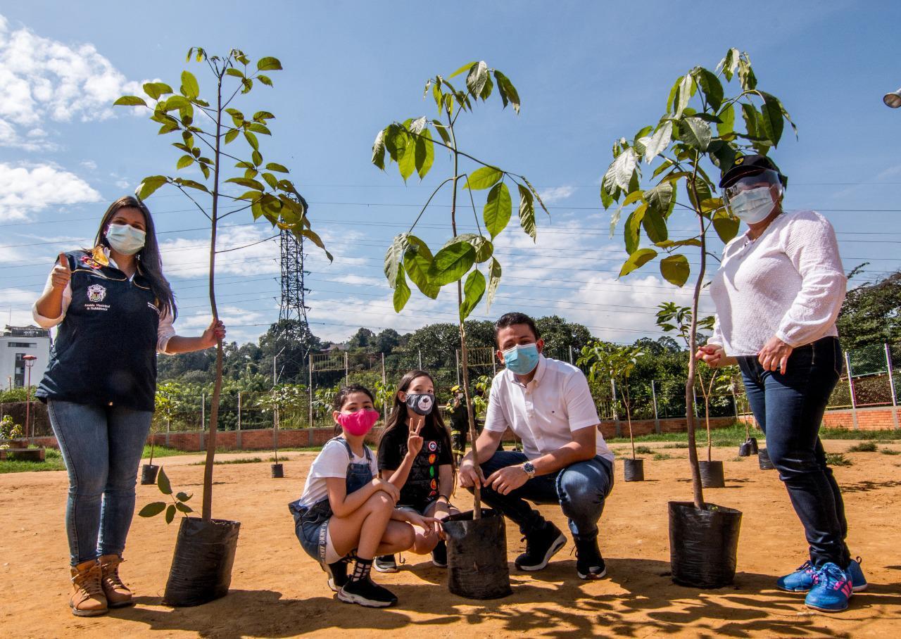 Con sembratón de mil árboles, Floridablanca celebró la Biodiversidad | EL FRENTE