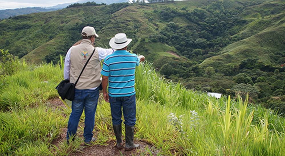 Exigen reforma urgente a la ley de restitución de tierras   EL FRENTE