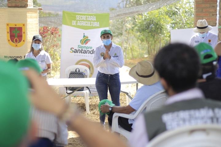 Trabajo articulado con el ICA en Santander opara capacitar a citricultores en prevención de plagas | Santander | EL FRENTE