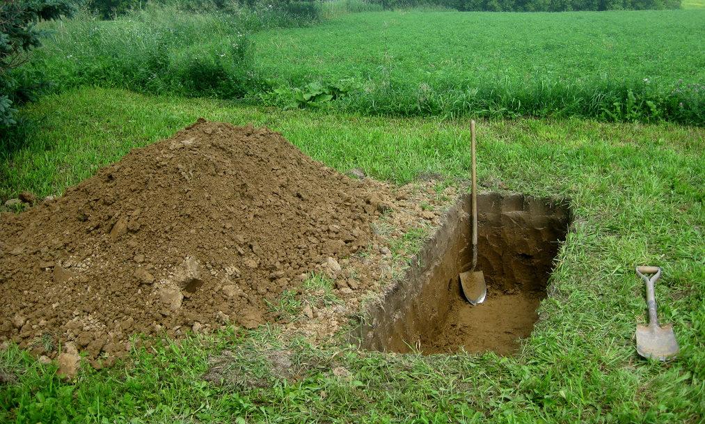 Como castigo lo hizo cavar su propia tumba   foto   EL FRENTE