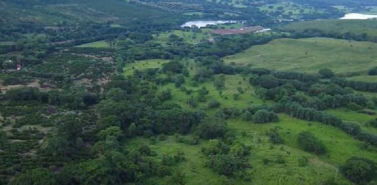 Le negaron la licencia ambiental a un proyecto minero    Nacionales   Colombia   EL FRENTE